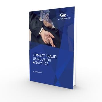 Combat Fraud using Audit Analytics 3D