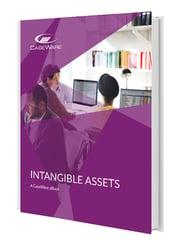 Caseware Thumbnail Intangible Assets
