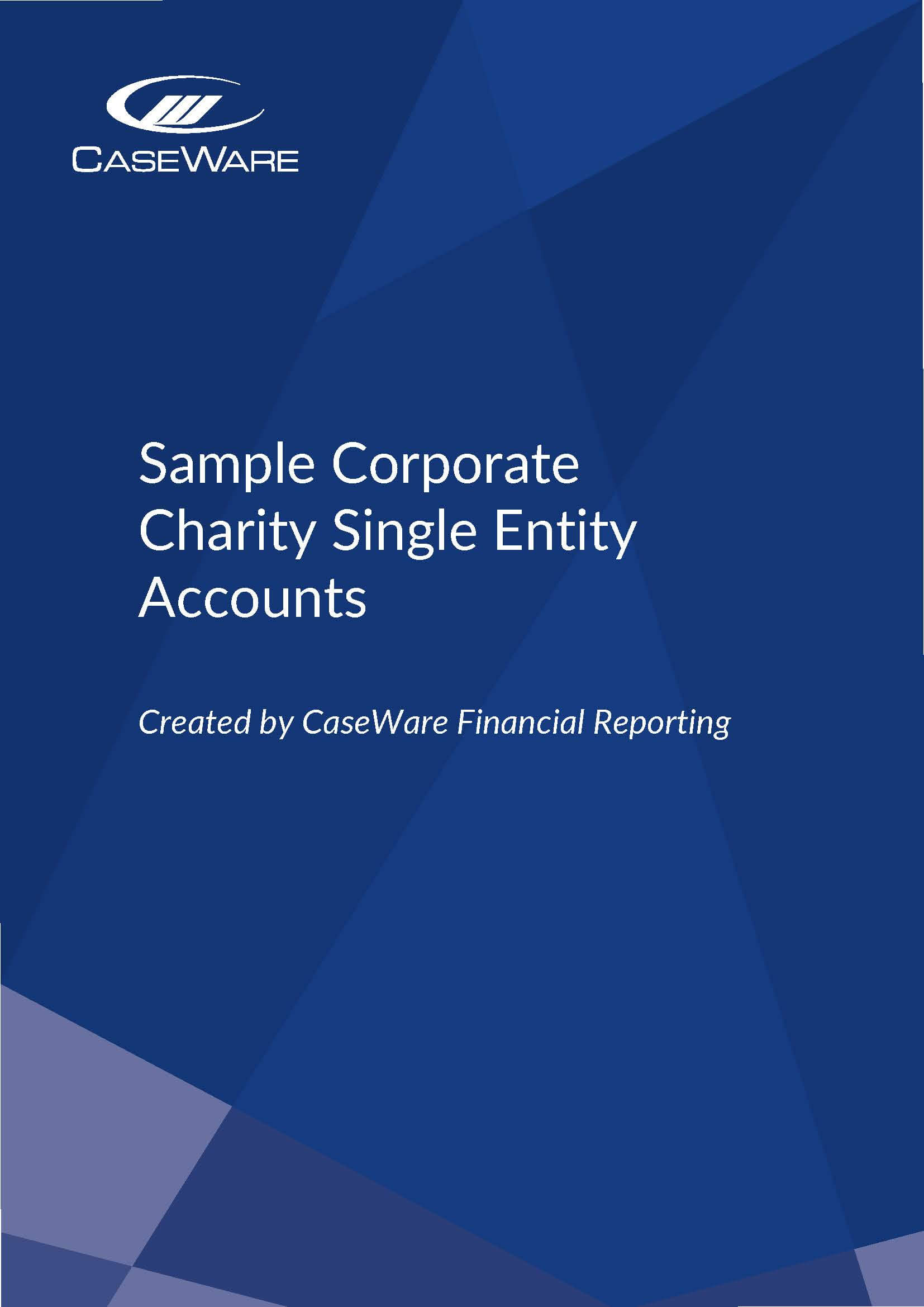 UK Corporate Charity 311217 Single Entity