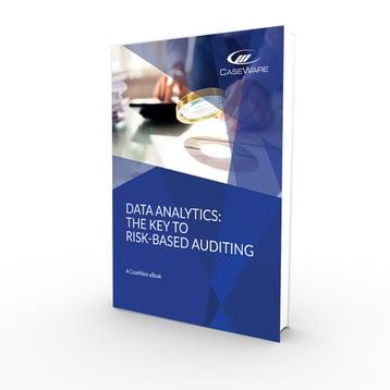 the key to risk-based audit FP 3D